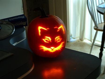 बिल्ली चेहरे के साथ प्रबुद्ध हेलोवीन कद्दू