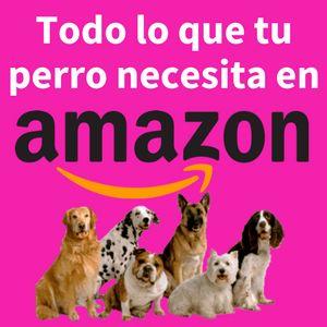 अमेज़ॅन कुत्तों