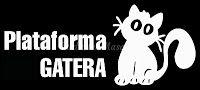 बार्सिलोना में फेलीन संक्रामक बीमारियों पर नि: शुल्क पाठ्यक्रम - डियान एडी
