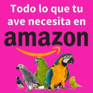 अमेज़ॅन पक्षियों