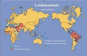 वैश्विक leishmaniasis मानचित्र