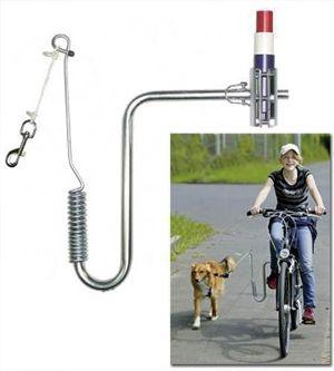 कुत्ते को साइकिल के साथ चलने के लिए पियर