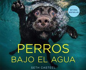 पानी के नीचे कुत्तों