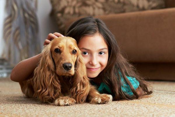 कुत्तों में लीशमैनोसिस क्या है?