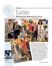 Xiii अंतरराष्ट्रीय कुत्ता शो