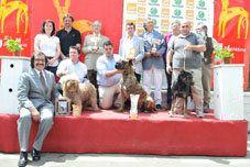 Xviii आर्किडोना कुत्ता मेला। मैंने स्पेनिश नस्लों की राष्ट्रीय प्रदर्शनी देखी